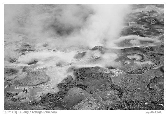 Hot springs detail. Yellowstone National Park (black and white)