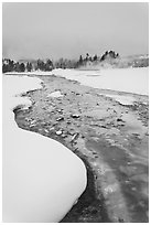 Thermal run-off stream contrasts with snowy landscape. Yellowstone National Park, Wyoming, USA. (black and white)