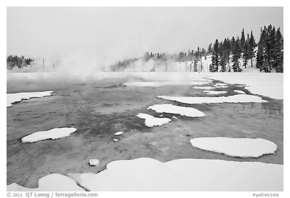 Chromatic Spring in winter. Yellowstone National Park (black and white)