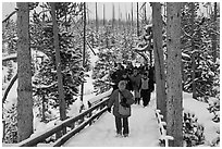 Visitors on boardwalk in winter. Yellowstone National Park, Wyoming, USA. (black and white)