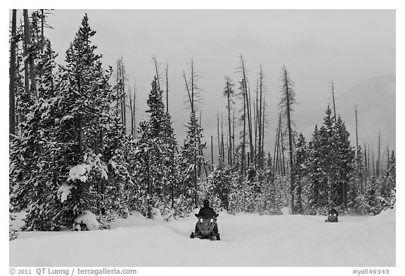 Snowmobiles. Yellowstone National Park, Wyoming, USA.