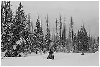 Snowmobiles. Yellowstone National Park, Wyoming, USA. (black and white)