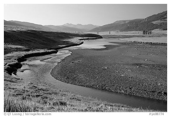 Lamar River, Lamar Valley, early morning. Yellowstone National Park (black and white)