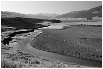 Lamar River, Lamar Valley, early morning. Yellowstone National Park, Wyoming, USA. (black and white)