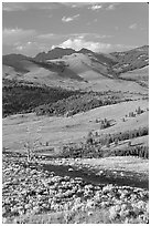 Hills from Specimen ridge, late afternoon. Yellowstone National Park ( black and white)