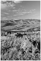 Rocks, grasses, and hills, Specimen ridge, late afternoon. Yellowstone National Park, Wyoming, USA. (black and white)