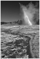 Daisy Geyser erupting at an angle. Yellowstone National Park, Wyoming, USA. (black and white)