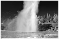 Grand Geyser eruption, afternoon. Yellowstone National Park, Wyoming, USA. (black and white)