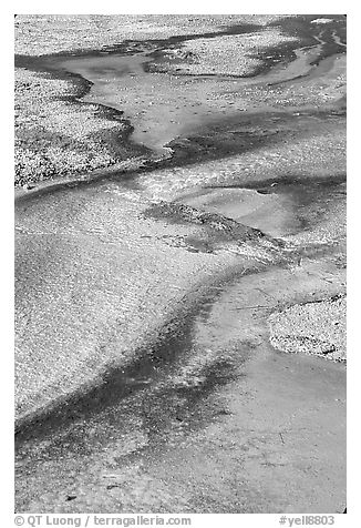 Detail of colorful algaes, Biscuit Basin. Yellowstone National Park (black and white)