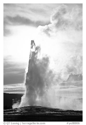 Old Faithful Geyser, late afternoon. Yellowstone National Park (black and white)