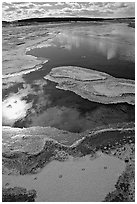 Frost along the Firehole River. Yellowstone National Park, Wyoming, USA. (black and white)