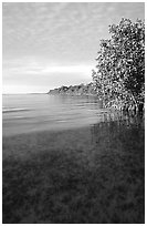 Elliott Key shore on Biscayne Bay, sunset. Biscayne National Park, Florida, USA. (black and white)