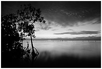 Sunset on Biscaye Bay from Elliott Key. Biscayne National Park, Florida, USA. (black and white)
