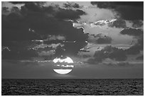 Sun rises over the Atlantic ocean. Biscayne National Park, Florida, USA. (black and white)