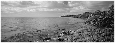 Island Altantic shoreline. Biscayne National Park (Panoramic black and white)