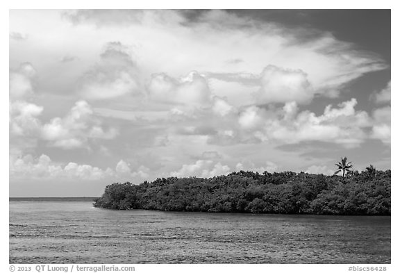 Adams Key, Biscayne Bay, and summer clouds. Biscayne National Park (black and white)