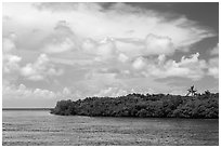 Adams Key, Biscayne Bay, and summer clouds. Biscayne National Park, Florida, USA. (black and white)