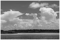 Barrier island, shallow waters, and afternoon clouds. Biscayne National Park, Florida, USA. (black and white)