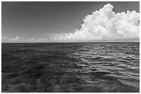 Reef and clouds. Biscayne National Park, Florida, USA. (black and white)
