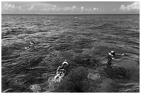 Snorklers and reef. Biscayne National Park ( black and white)