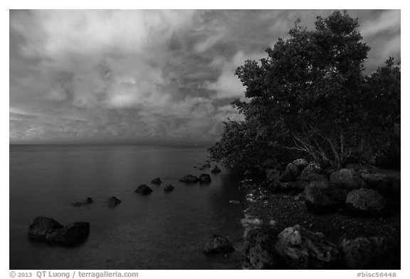 Biscayne Bay shoreline at night, Convoy Point. Biscayne National Park (black and white)