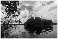 Mangrove islet, Biscayne Bay. Biscayne National Park, Florida, USA. (black and white)