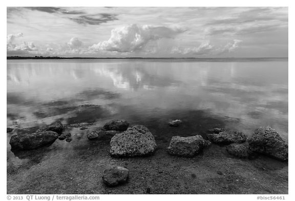 Rocks and Biscayne Bay reflections. Biscayne National Park (black and white)