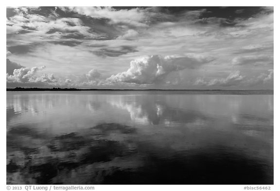 Clouds reflected in water, Biscayne Bay. Biscayne National Park (black and white)