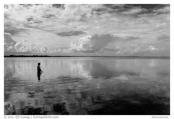 Park visitor looking, standing in glassy Biscayne Bay. Biscayne National Park (black and white)