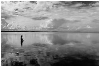 Park visitor looking, standing in glassy Biscayne Bay. Biscayne National Park ( black and white)