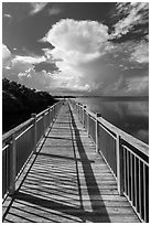 Boardwalk and Biscayne Bay, Convoy Point. Biscayne National Park, Florida, USA. (black and white)
