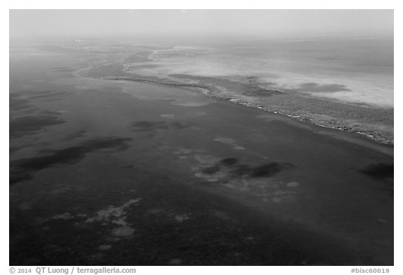 Aerial view of reef and Elliott Key. Biscayne National Park (black and white)