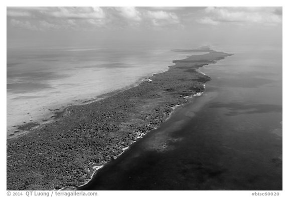 Aerial view of Biscayne Bay, Elliott Key, and Hawk Channel. Biscayne National Park (black and white)