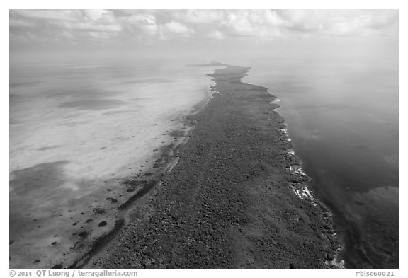 Aerial view of Elliott Key. Biscayne National Park (black and white)