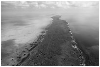 Aerial view of Elliott Key. Biscayne National Park ( black and white)