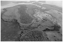 Aerial view of Totten Key and Jones Lagoon. Biscayne National Park ( black and white)
