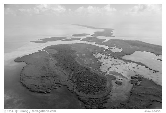 Aerial view of whole chain of keys. Biscayne National Park (black and white)