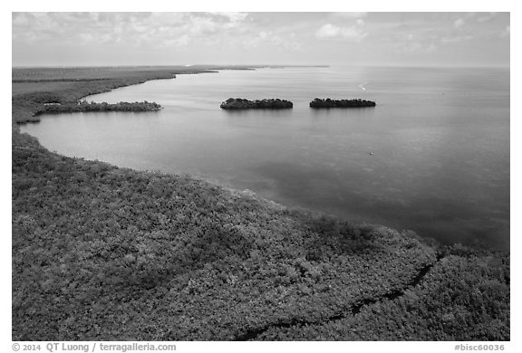 Aerial view of mangrove coast in islets. Biscayne National Park (black and white)