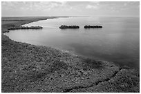 Aerial view of mangrove coast in islets. Biscayne National Park ( black and white)