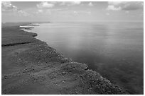 Aerial view of mainland mangrove coast. Biscayne National Park ( black and white)