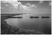 Aerial view of mainland coast near Convoy Point. Biscayne National Park ( black and white)