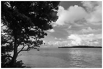 Sands Key across Lewis Cut from Boca Chita Key. Biscayne National Park ( black and white)