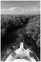 Passengers on front of boat navigating narrow channel. Biscayne National Park ( black and white)