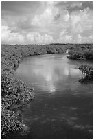 Channel. Biscayne National Park ( black and white)
