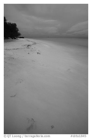Beach at dusk. Dry Tortugas National Park (black and white)