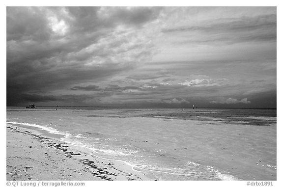Beach and turquoise waters, Garden Key. Dry Tortugas National Park (black and white)