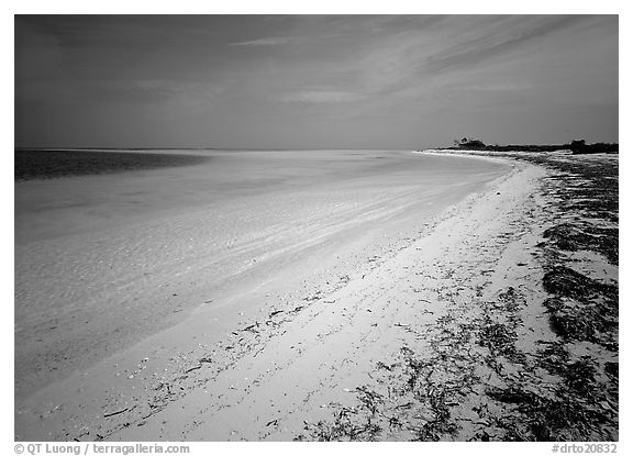 Sandy beach and turquoise waters, Bush Key. Dry Tortugas National Park (black and white)