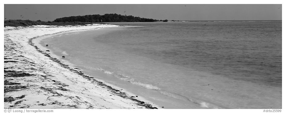 Sandy beach and turquoise waters. Dry Tortugas National Park (black and white)