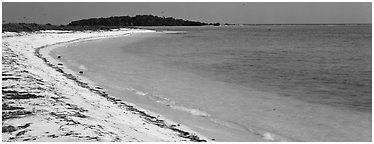 Sandy beach and turquoise waters. Dry Tortugas National Park (Panoramic black and white)