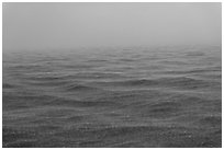 Rain over ocean. Dry Tortugas National Park, Florida, USA. (black and white)